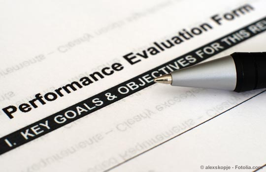 Chief Staff Performance Evaluation Overview  NarRealtor