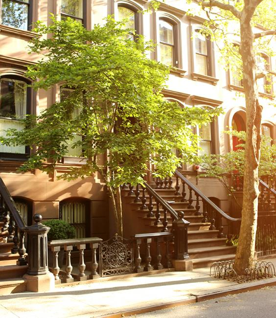 Brownstones and trees