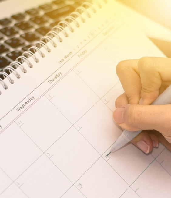 Woman writing in a planning calendar