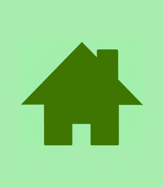 EHS visual story house icon green