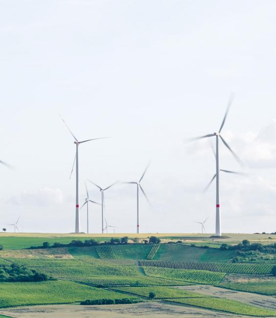 Energy-generating windmills in a field