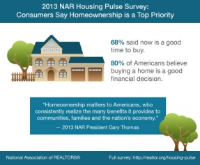 2013-housing-pulse-infographic