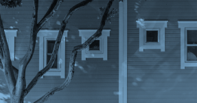 A tree and windows of a house with a blue filter
