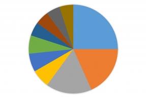 RMIC Top Issues Blank Chart