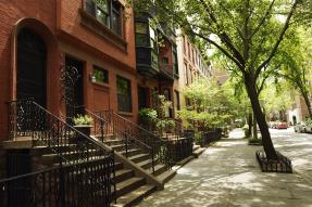 Brownstones on a tree-lined street
