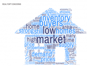 Word cloud: REALTOR® Concerns