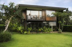House with tropical landscaping