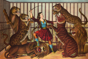 Drawing of a lion tamer in a cage with lions, leopards, and a tiger