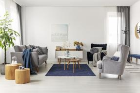 Staged living room in blues and grays