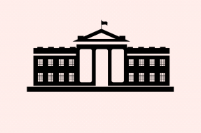 White House icon