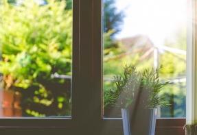 Window overlooking garden