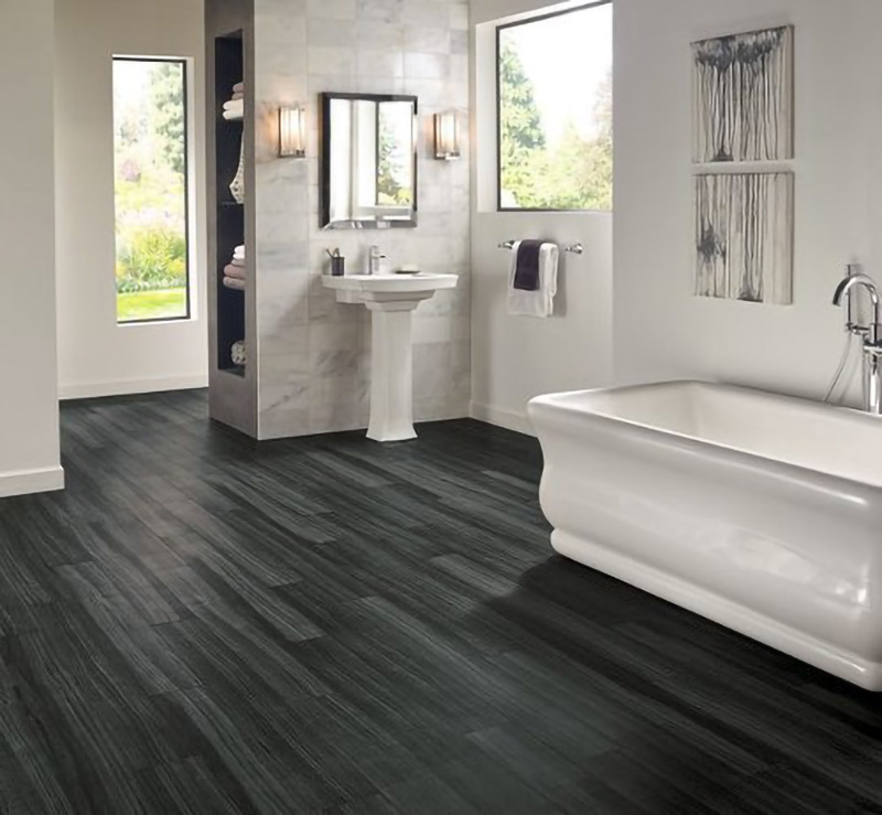 Bathroom with dark hardwood floors