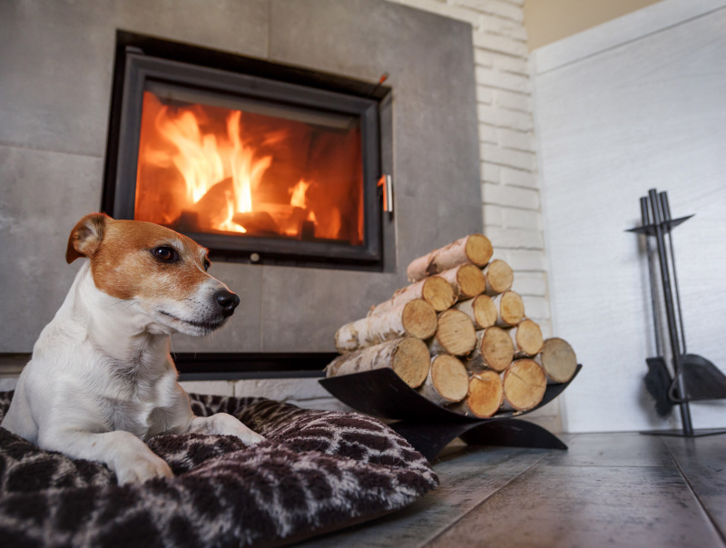 A wood burning fireplace with a dog sitting in front of it