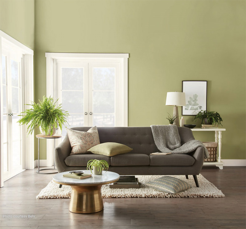 "Behr's ""Back to Nature"" green."