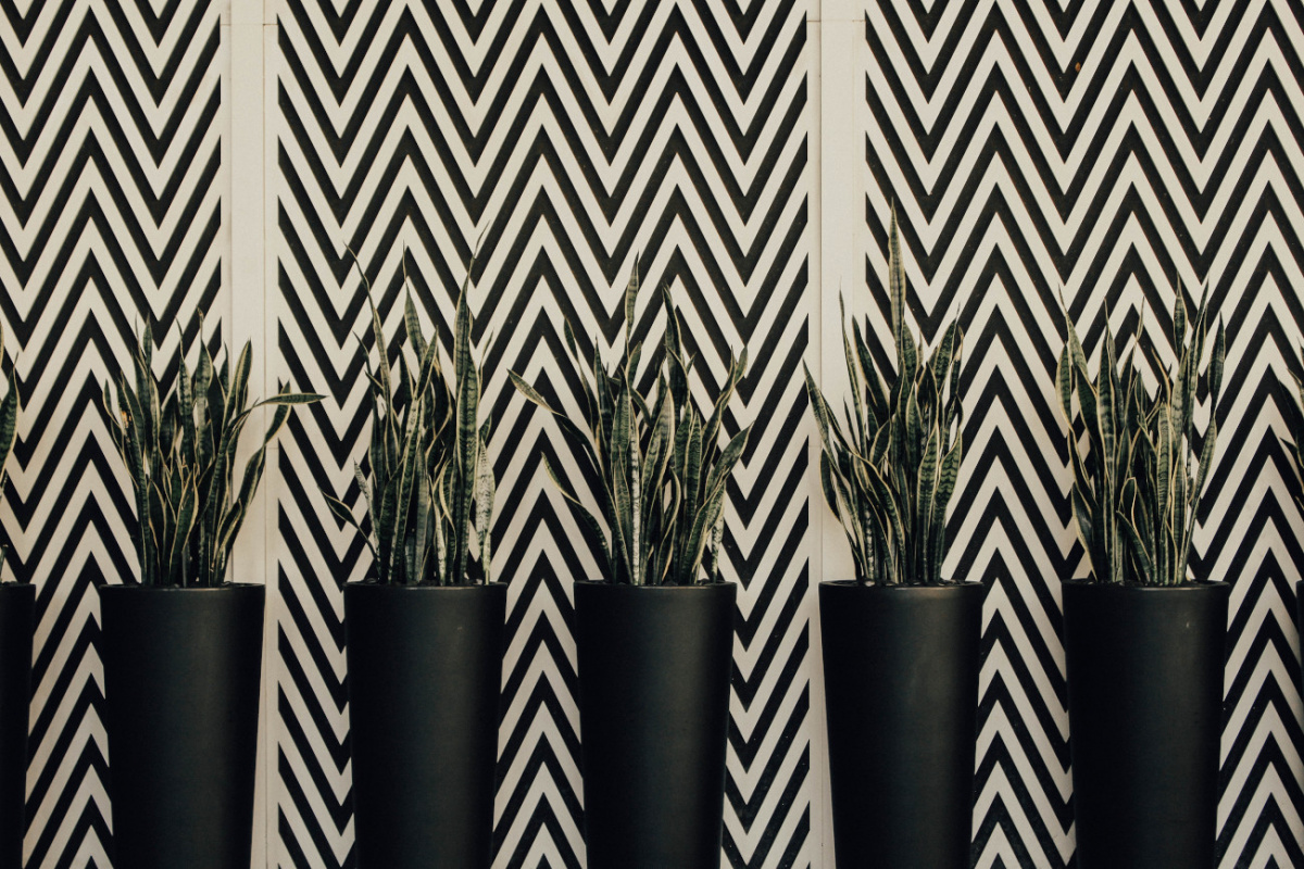 A wall with Chevrons printed on it.