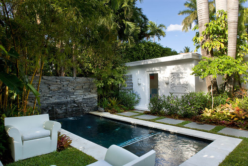 A pool in a backyard with tropical trees