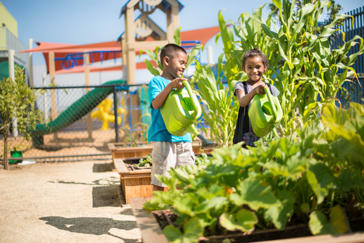 A young boy and girl watering plants on a playground