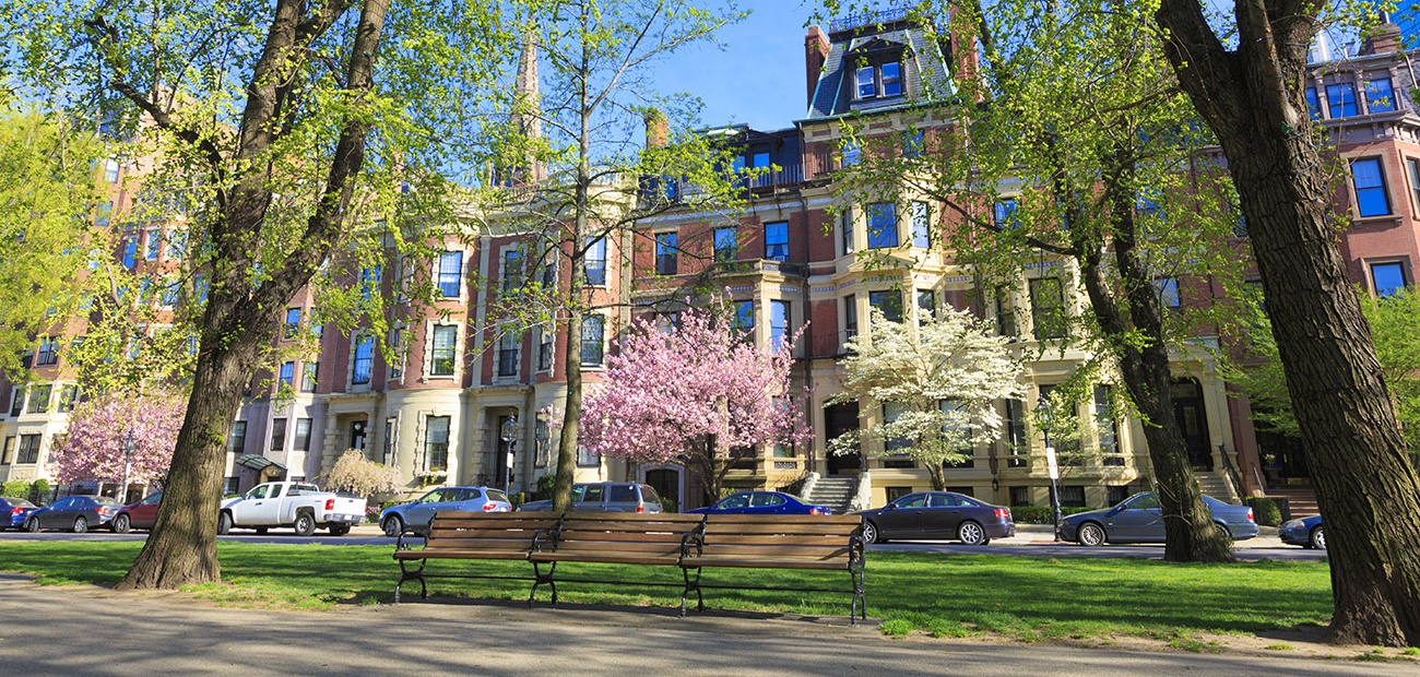 Brownstone townhouses next to a park