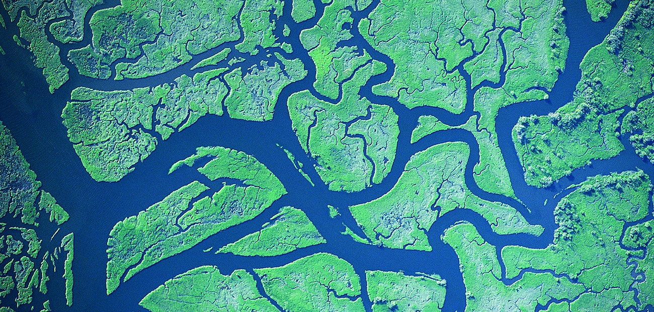 Aerial view of river delta