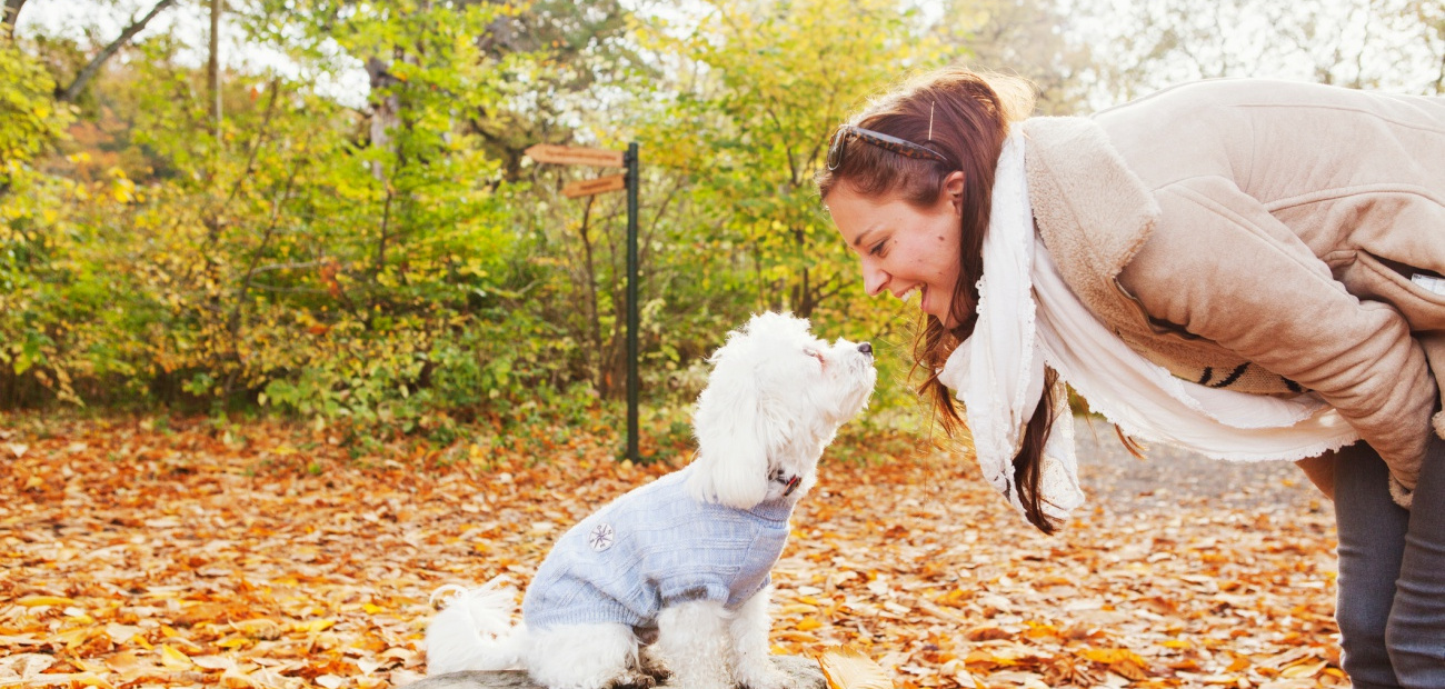 Woman looking at dog in forest