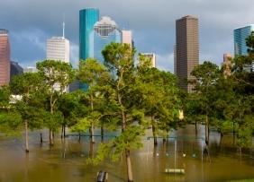 Harvey Sparks Flood Insurance Disaster