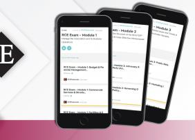 3 mobile phones showing the RCE app