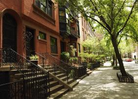 Brownstones on a tree-lined street