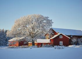 Red farm house in snow