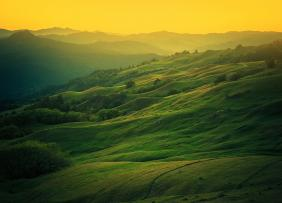 Rolling green hills and a yellow sky