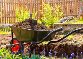 Wheelbarrow full of dirt in a garden