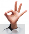 "U.S. hand signal for ""okay"""