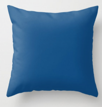 Pantone blue pillow
